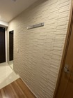 玄関に既存のミラー周りにグラナスルドラのベージュ