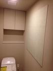 トイレに部分的にスプラインのライトグリーン